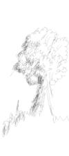 2016_06_13_tree_airbrush_side